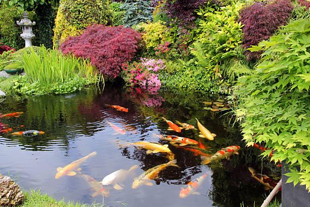 Tavasz a kerti tavunkban 1 rész